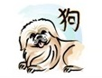 The dog is the eleventh sign of the Chinese zodiac
